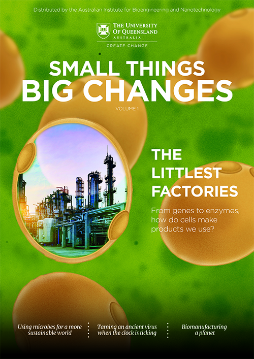 Small Things Big Changes Volume 1: Advanced Biomanufacturing, AIBN.