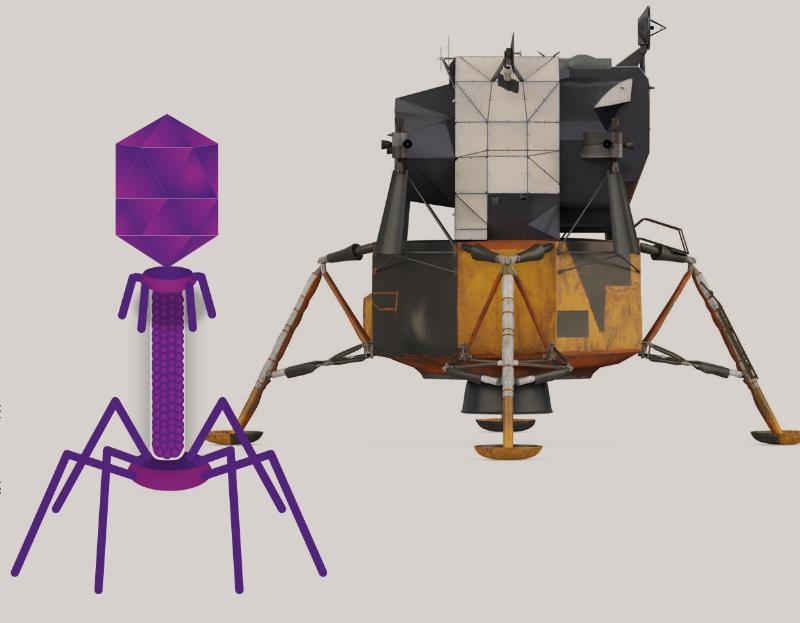 Lunar lander, Going through a phage, AIBN's Small Things Big Changes