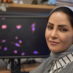 Paper first author and AIBN graduate Dr Jamileh Nabizadeh.