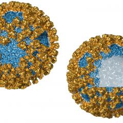 Virus-like nanoparticles (VNP) are made from structural proteins