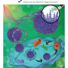 Journal of the American Chemical Society (JACS) cover featuring the work.