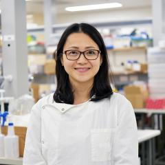 Dr Hang Ta has received funding from the Heart Foundation for her research into how nanomedicines could detect and treat heart disease.