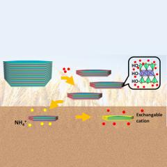 Nanomaterials for Agricultural Fertilizer Amendment